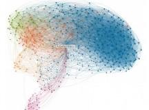Inteligencia CoNectiva vs. CoLectiva: Lo individual y lo colectivo