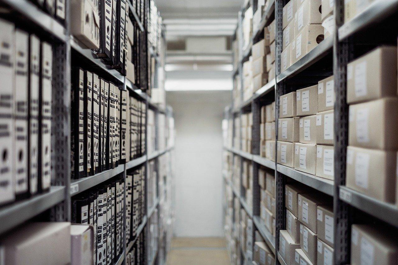 Archivo de 41 artículos sobre Inteligencia Colectiva
